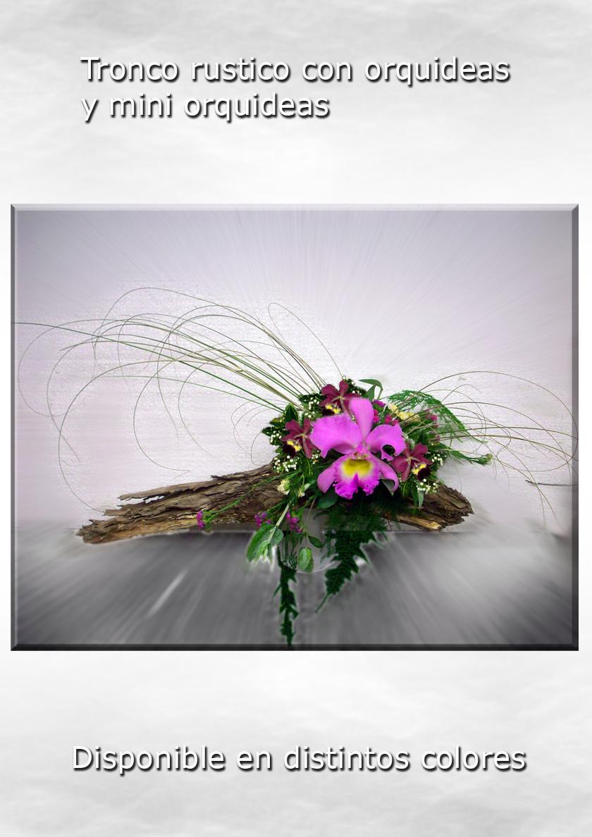 Tronco rustico de orquídea