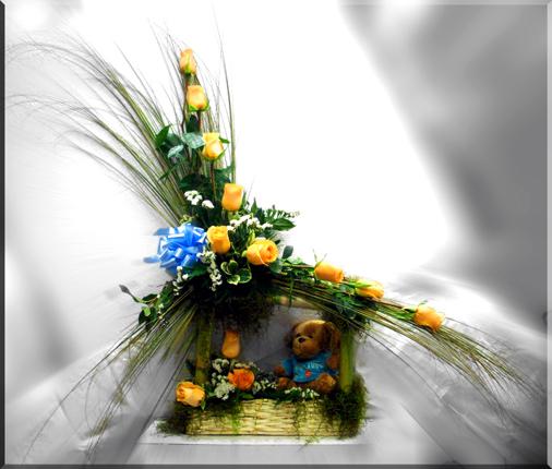 Cobertizo en Rosas y Flores varias con peluche